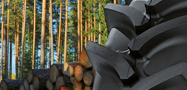 Neumáticos forestales, especiales para trabajar en espacios tan bellos como difíciles
