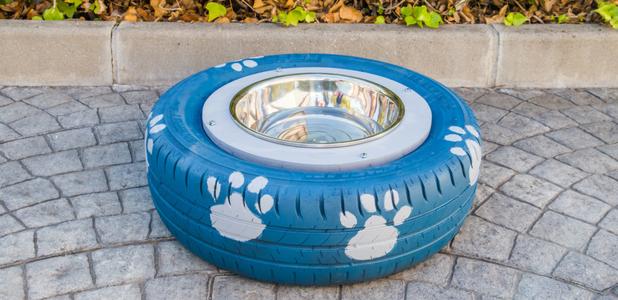 Bebedero para perros con un neumático