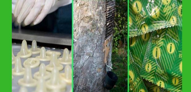 Los condones del Amazonas que te protegen a ti y a esta selva