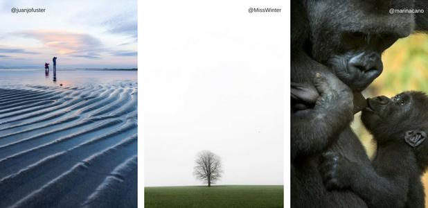7 fotógrafos de naturaleza y viajes que deberías seguir en Instagram