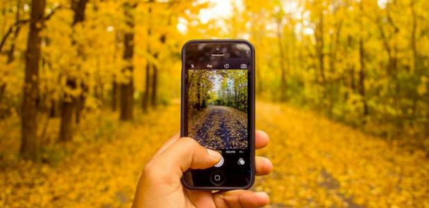 """10 cuentas de Instagram para estar siempre """"al día"""" sobre Medio Ambiente"""