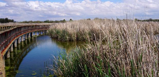 """""""Es necesario seguir ampliando la Red de Parques Nacionales"""""""