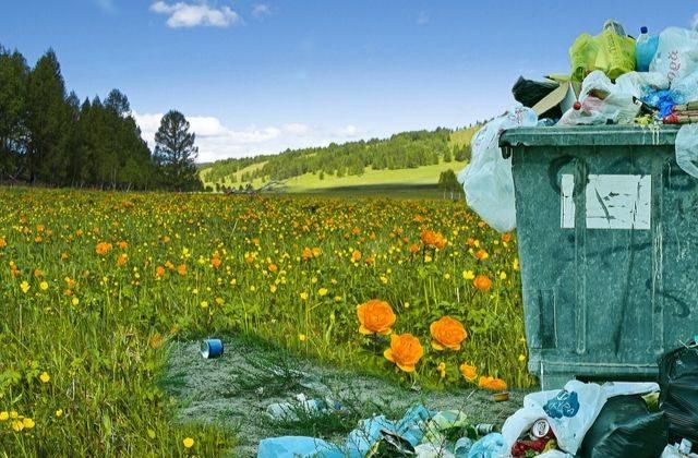 Los 8 datos más alarmantes del desperdicio alimentario