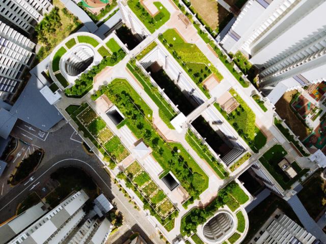 Día Mundial del Urbanismo: crear ambientes sanos, con espacios verdes