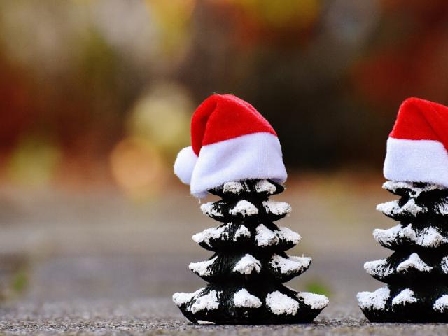 Cómo reducir la huella de carbono en Navidad