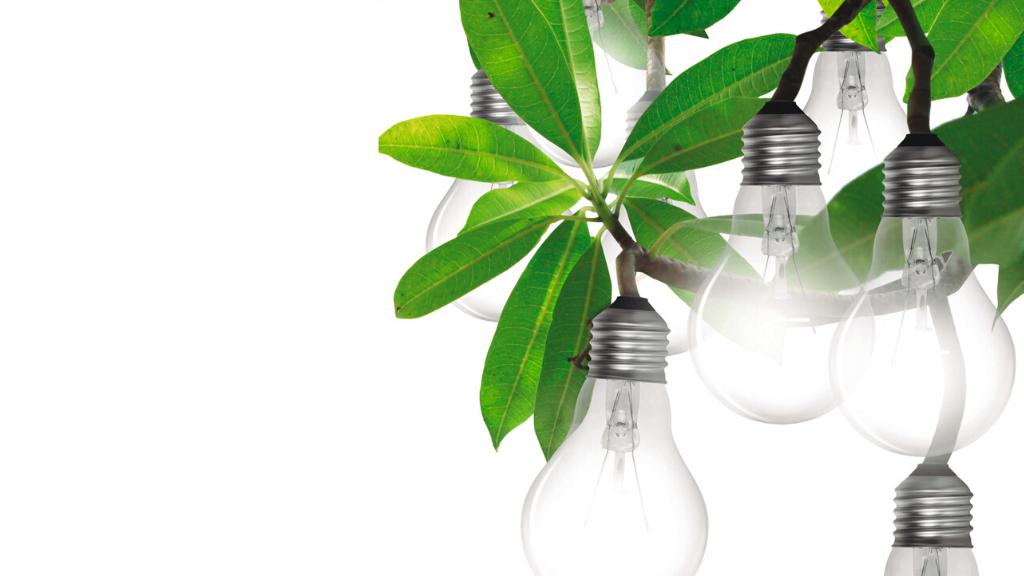 Eficiencia energética para luchar contra el cambio climático