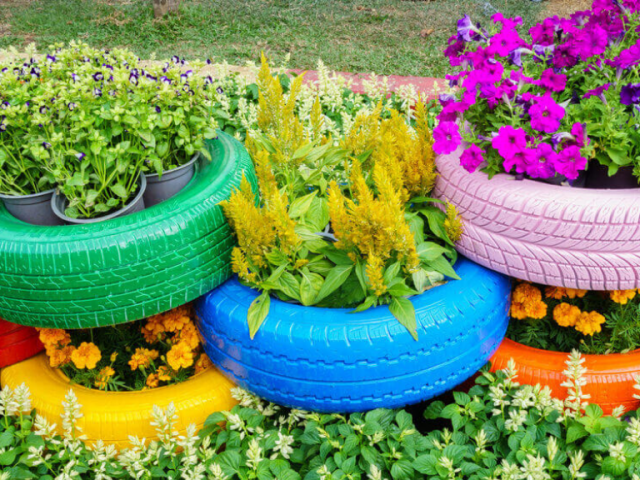 Huerto escolar con neumáticos reciclados