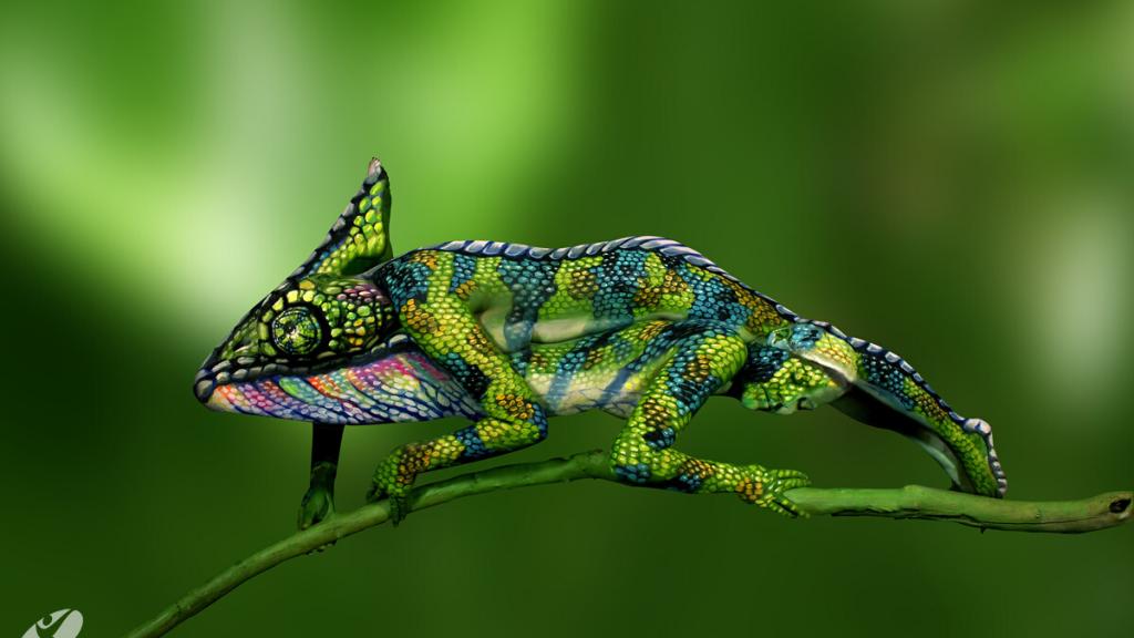 Camaleón obra de Johannes Stotter