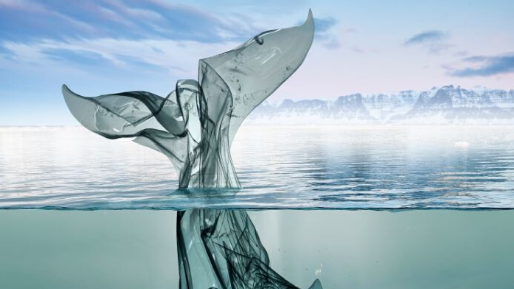 Tres proyectos para mejorar la salud de nuestros océanos