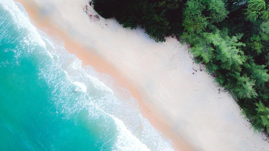 Playas: ¿ ecosistemas o infraestructuras turísticas?