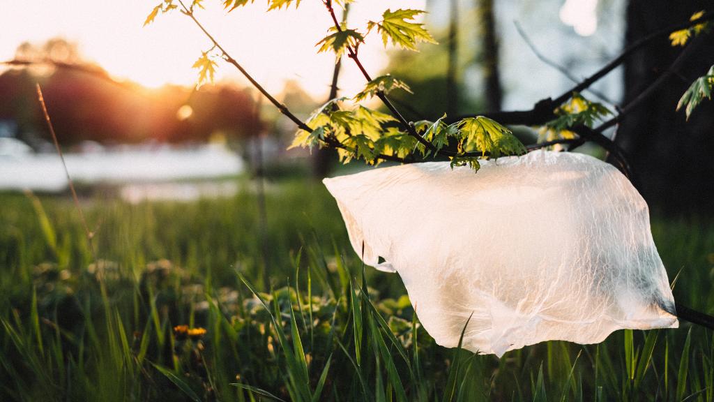 """Guía de """"nuevos"""" plásticos con menor impacto ambiental"""