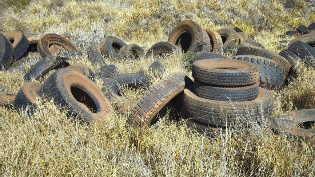 Neumáticos abandonados en el campo