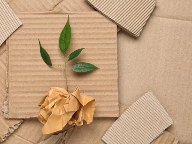 Las 10 reglas de un embalaje sostenible