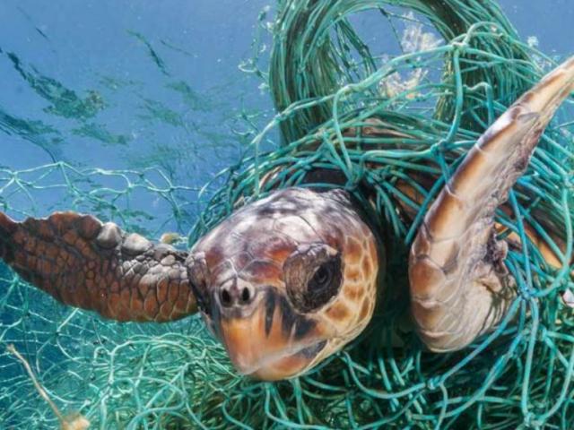 Hecho con basuras del mar