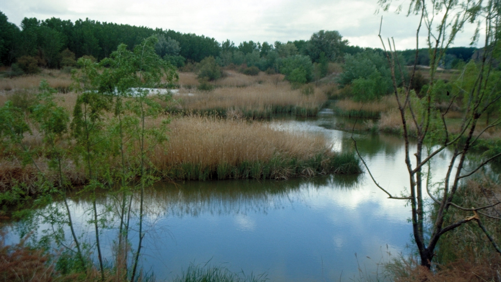Las lagunas de El Campillo formarán parte del Arco Verde de Madrid